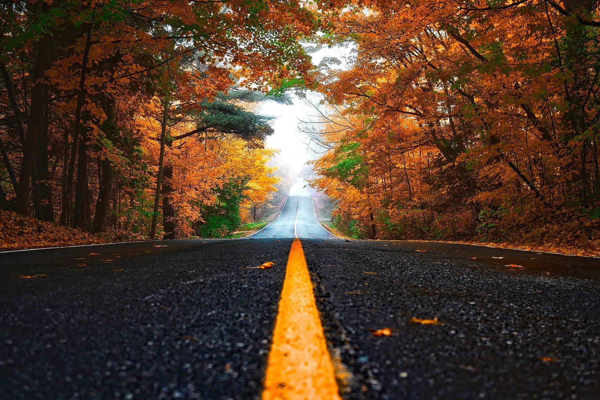 Sendeplan-Update zum Herbstanfang